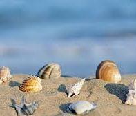 Spiagge libere, sabbia finissima e tranquillità