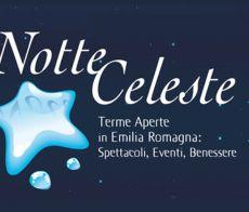Il logo della Notte Celeste