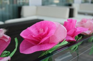 Notte Rosa decorazioni