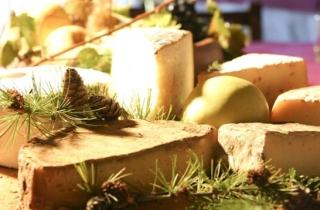 Paesi e Sapori, gusto e delizie enogastronomiche a Cesenatico