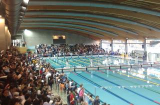 Stadio del nuoto di riccione una bella realt sportiva - Hotel riccione con piscina coperta ...