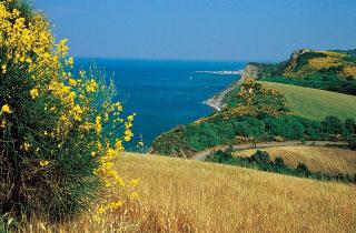 Parco del Monte San Bartolo, nella Riviera Adriatica
